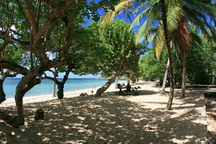 location martinique tartane