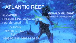 atlantic reef location martinique tartane