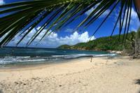 les plages location martinique tartane