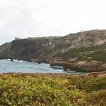 location martinique tartane